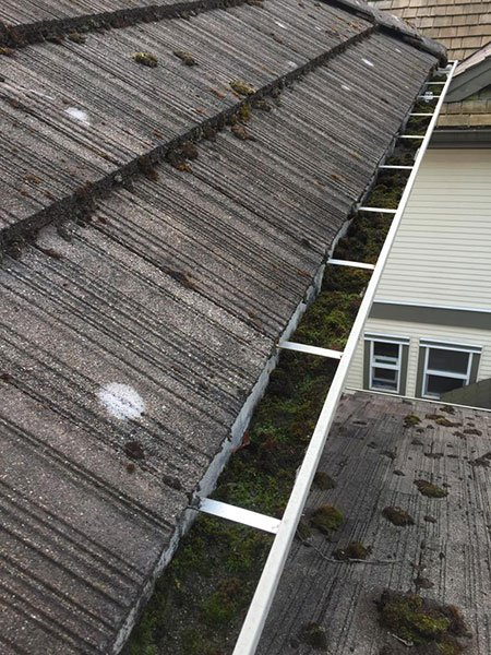 gutter cleaning before 1