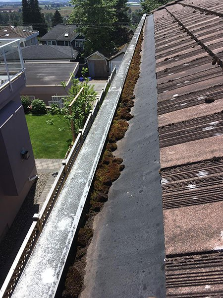 gutter cleaning before 2