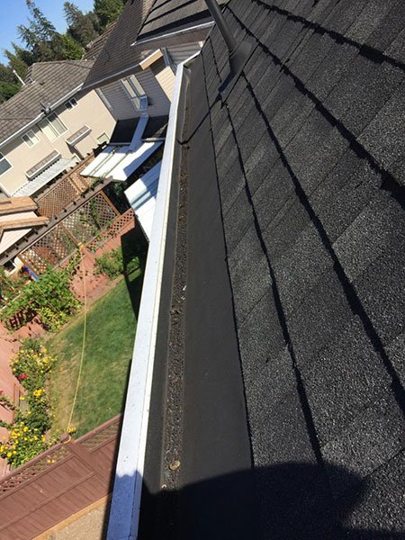 gutter cleaning before 3