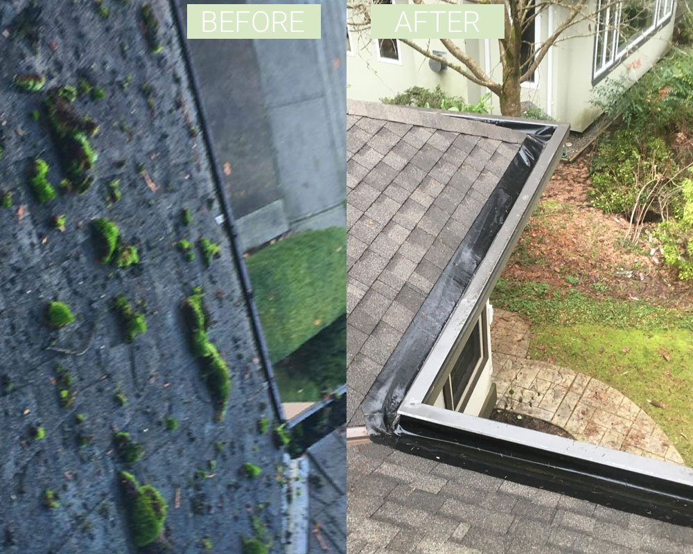 moss removal process
