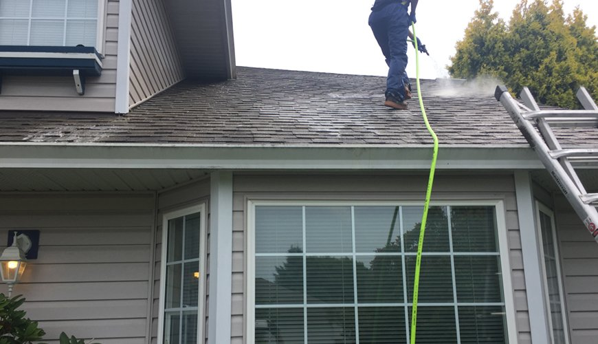 Vancouver Roof Cleaners