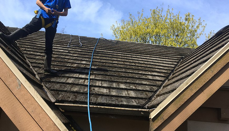 residential roof cleaners vancouver