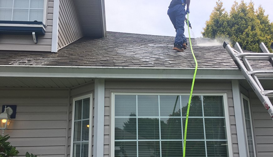 professional roof cleaning vancouver company