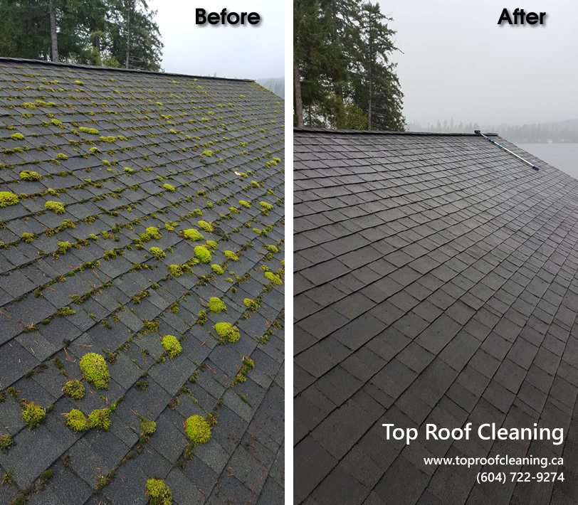 roof cleaning vancouver