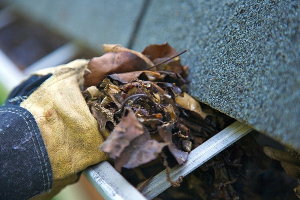 Importance Of Gutter Cleaning