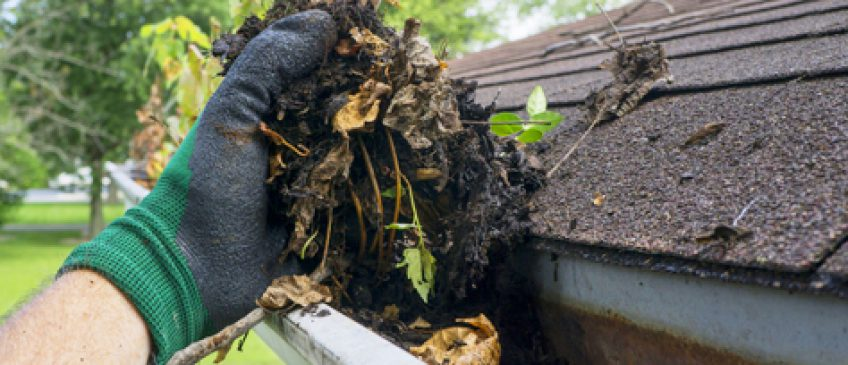 Gutter Cleaning Benefits