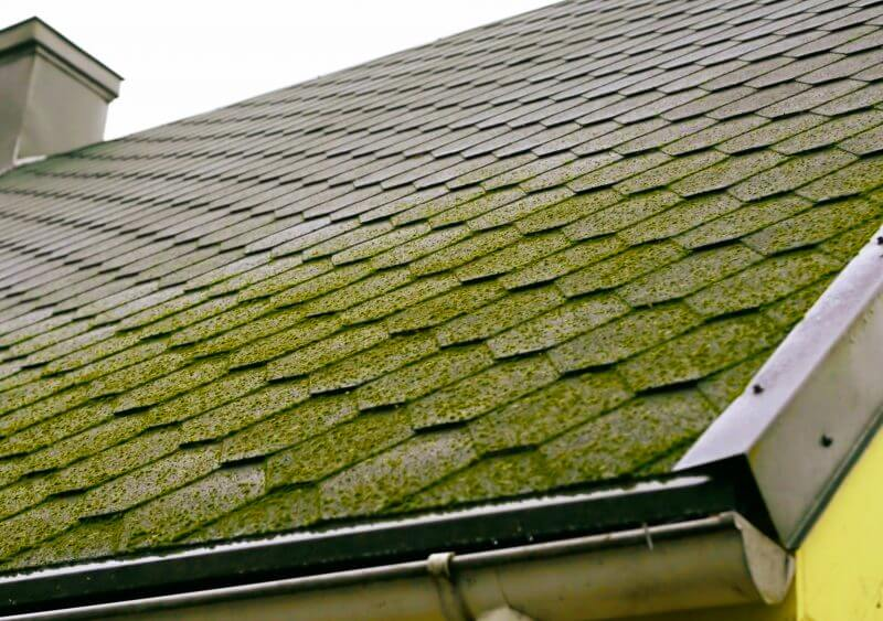 Roof Moss Removal With Soft Washing