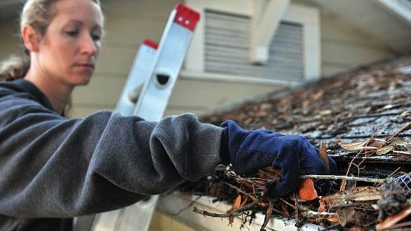 Gutter & Roof Cleaning Surrey