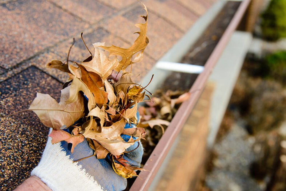 Professional Gutter Cleaners Vancouver