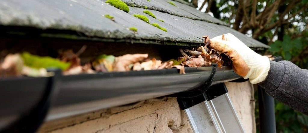 Gutter Cleaning Maple Ridge